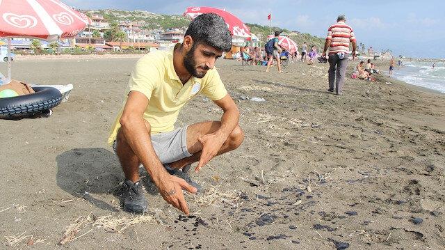 Hatay sahillerinde petrol kirliliği