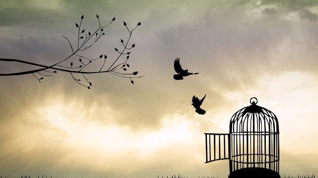 Özgürlük    Tasması