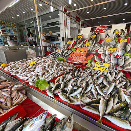 Balık sezonu istavrit bereketiyle başladı: Balıkçıların umudu arttı