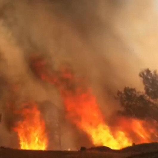 Mersinde ormanlık alanda çıkan yangın kontrol altına alındı