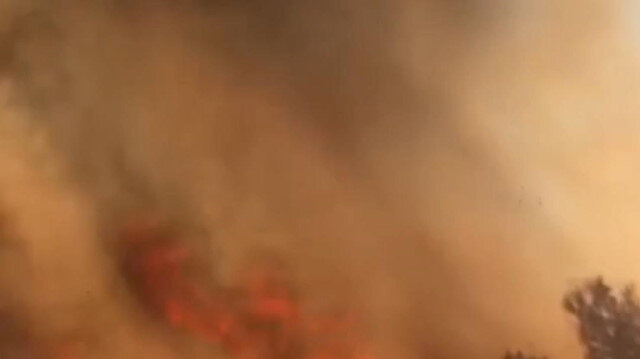 Mersin'de ormanlık alanda çıkan yangın kontrol altına alındı