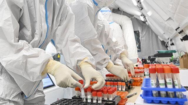 600 bin kişi incelendi: Aşısızlarda ölüm riski 11 kat fazla