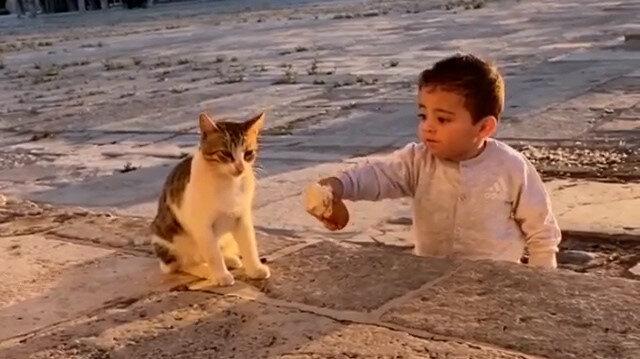Mescid-i Aksa'da yemeğini kediyle paylaşan sevimli çocuk