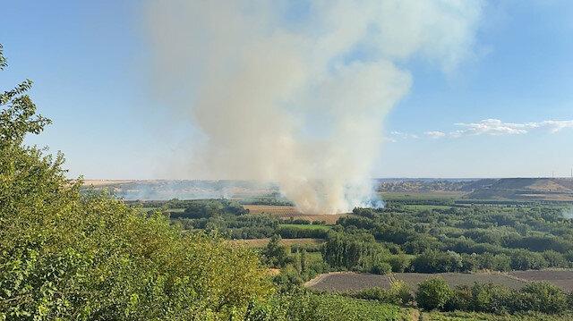 Diyarbakır'daki 7 bin yıllık Hevsel Bahçeleri'nde korkutan yangın