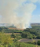 Hevsel Bahçelerinde yangın çıktı