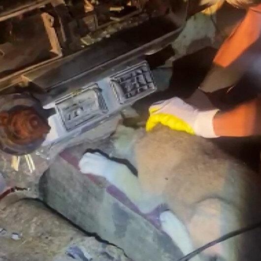 Hurda aracın vites boşluğunda sıkışan yavru köpek kurtarıldı