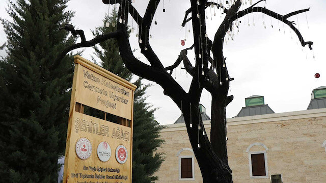 'Şehitler Ağacı'ndan 193 şehit askerin künyesini çaldılar