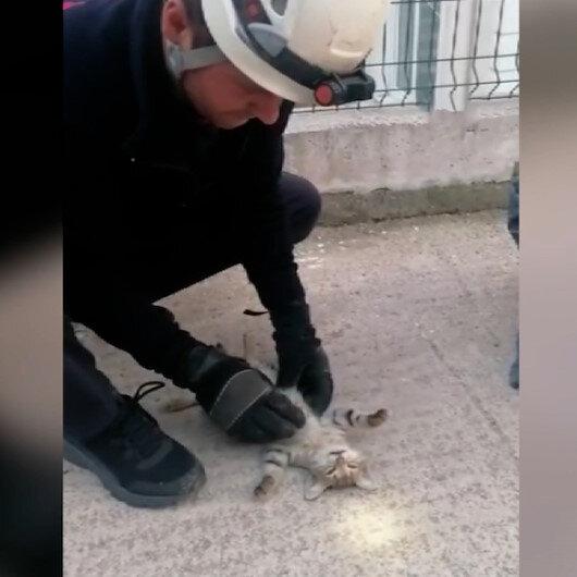 İtfaiye eri kalbi duran yavru kediyi hayata döndürmek için zamanla yarıştı