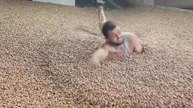 Ordu'da TikToker fındıkların içinde yüzüyor
