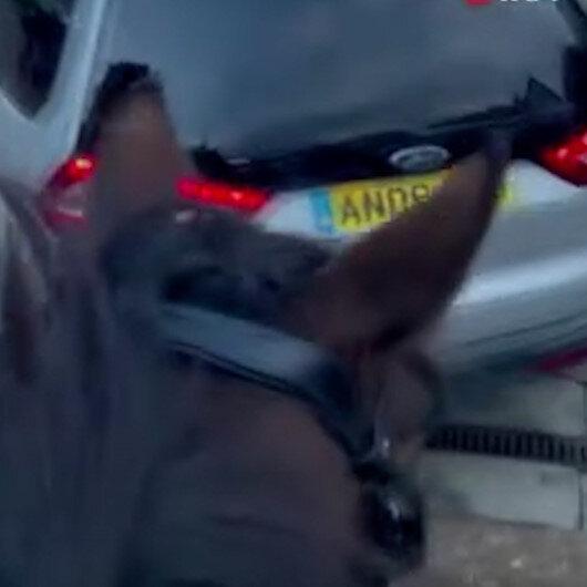 İngilterede yakıt kriziyle dalga geçen adam istasyona atla gitti
