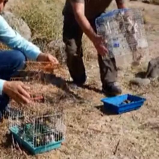 Suriyeye götürülmek istenen 222 saka kuşu doğaya salındı
