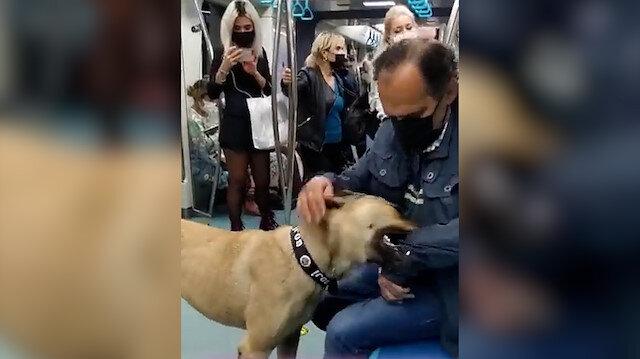 İBB'nin 'PR' köpeği Boji tartışma konusu oldu