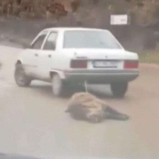 Kocaeli'de tepki çeken görüntü: Ölüsünü otomobilinin arkasına bağlayıp sürükledi