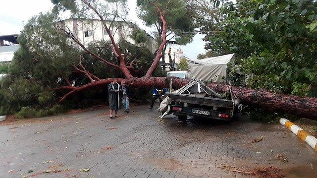 Aydın'daki fırtınanın bilançosu ağır oldu: 7 yaralı 15 iş yeri ile 17 araçta hasar