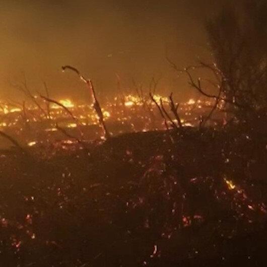 Kaliforniya'da 10 büyük yangın devam ediyor: 5 bin 500 hektar alan küle döndü