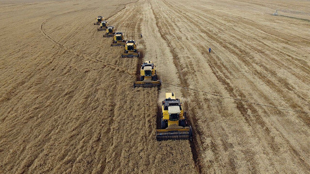 Tarım ÜFE eylülde yüzde 1,46 artış gösterdi