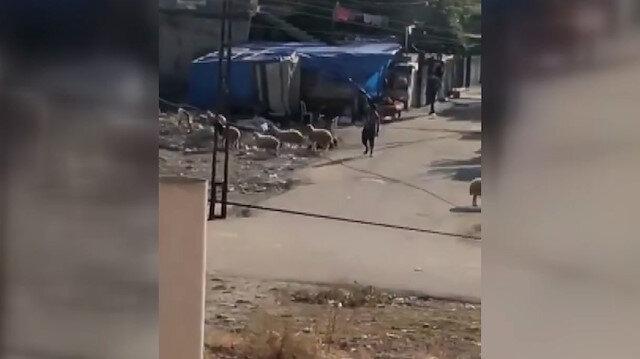 Adana'da 'Cono aşireti' arasında yaşanan silahlı çatışma anları kamerada