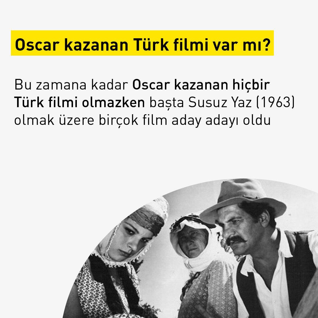 Bu zamana kadar Oscar kazanan hiçbir Türk filmi olmazken başta Susuz Yaz (1963) olmak üzere birçok film aday adayı oldu.
